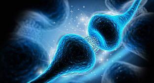 מעכבים סלקטיביים של ספיגה חוזרת של סרטונין והסיכון לתסמונת רגל חסרת מנוח