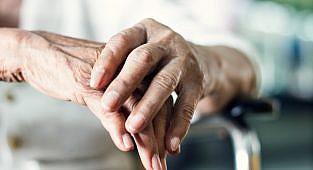 גילוי הפוטנציאל של אלגנולון בטיפול תרופתי במחלת פרקינסון: פעילויות נוירופרוטקטיביות ואנטי דלקתיות